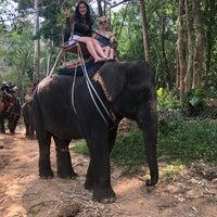 Photo taken at Safari Elephant by Ümran B. on 4/20/2018