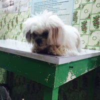 Photo taken at Paraan Animal Clinic by Monique M. on 5/7/2015