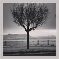 Photo taken at Lungolago di Stresa by Mary M. on 1/15/2013