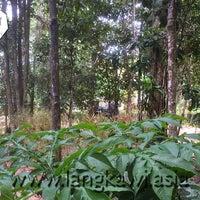 Photo taken at Langkawi Elephant Adventures by Langkawi Elephant Adventures on 9/7/2014