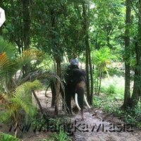 Photo taken at Langkawi Elephant Adventures by Langkawi Elephant Adventures on 9/8/2014