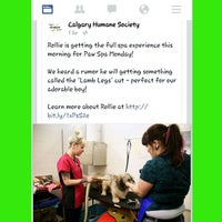 Photo taken at Calgary Humane Society by Jeanette E. on 3/30/2015