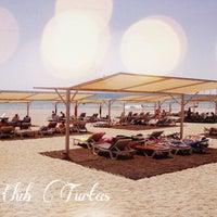7/25/2013 tarihinde Katja F.ziyaretçi tarafından Club Turtaş Beach Hotel'de çekilen fotoğraf