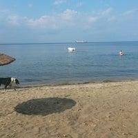Photo taken at Cinaralti Gazinosu by Muzaffer on 9/14/2014