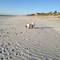 Photo taken at Palmetto Dunes by Carol C. on 2/3/2013