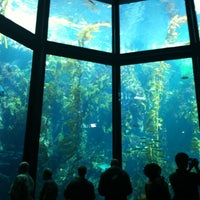 Photo taken at Monterey Bay Aquarium by Terry H. on 1/20/2013
