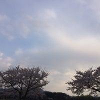 Photo taken at 경주동부사적지대 by Matt A. on 4/5/2014