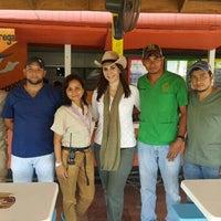 Photo taken at Zoologico Joya Grande by Anna M. on 4/15/2016