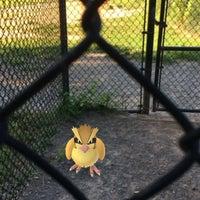 Photo taken at Oakton Dog Park by Mark P. on 7/21/2016