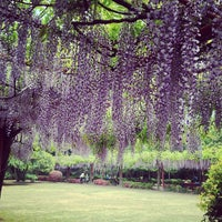 Photo taken at Jiading Wisteria Garden by Bryan Y. on 4/22/2013
