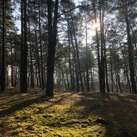 Photo taken at Jezioro Rudnickie Wielkie by Vivien Y. on 2/4/2018
