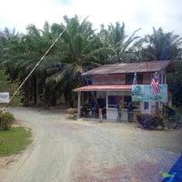 Photo taken at Labuk Bay Proboscis Monkey Sanctuary by mohdnadzmie on 4/9/2015