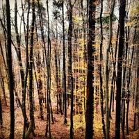 Photo taken at Molnik by Lauren K. on 11/25/2013