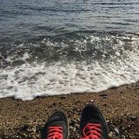 2/18/2018 tarihinde SeviL D.ziyaretçi tarafından Yalıçiftlik Sahil'de çekilen fotoğraf