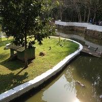 Foto tirada no(a) Parque Ecológico do Córrego Grande por Ricardo A. em 9/1/2013