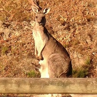 Photo taken at Cardinia Reservoir Park by Paige T. on 2/23/2013