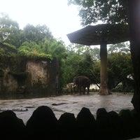 Photo taken at Park And Go - Kebun Binatang Ragunan by eQ S. on 2/26/2014