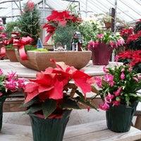 Foto tirada no(a) Angels Garden Center por Jeffrey D. em 12/19/2014