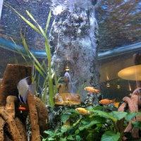 Photo taken at Aquarium restaurante-arrocería by Vane G. on 10/3/2014