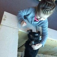 Photo taken at Контактный зоопарк «Лесное посольство» by Natalia M. on 3/20/2016