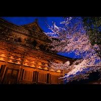 4/3/2013にtoshizaiが東寺 (教王護国寺)で撮った写真