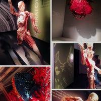 10/30/2013 tarihinde @VegasWayne A.ziyaretçi tarafından BODIES...The Exhibition'de çekilen fotoğraf