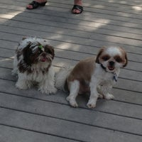Photo taken at Tompkins Square Park Dog Run by Kathryn B. on 7/21/2013
