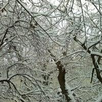 2/10/2013 tarihinde István S.ziyaretçi tarafından Óhegy park'de çekilen fotoğraf