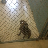 Photo taken at Hillsborough County Animal Services by Oreo M. on 10/13/2012