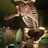 Photo taken at Museo de Paleontología by Ivan M. on 3/6/2016