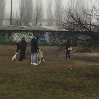 Photo taken at Дрессировочная площадка клуба Гелион (на Зодчих) by Alona D. on 12/20/2015