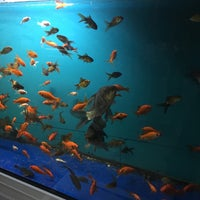 Photo taken at Can Petshop by Seyhan G. on 12/2/2016