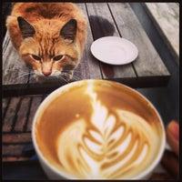Photo taken at Starbucks by Deren A. on 1/18/2013