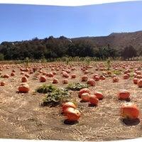 Photo taken at Bates Nut Farm by Karen D. on 10/8/2012