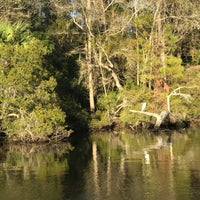 Photo taken at Wakulla River by Mei H. on 1/11/2017