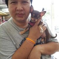Photo taken at ร้านอาบน้ำ ตัดขน ฝากเลี้ยงสุนัข/ถนนสายไหม ปากซอย 57 by Dusit D. on 8/10/2014