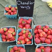 Photo taken at Mt. Pleasant Farmer's Market by Anna J. on 6/9/2012