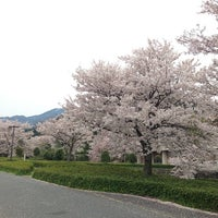 Photo taken at 鹿野城跡公園 by ft k. on 4/13/2014