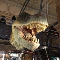 Foto tomada en Museo de Historia Natural por Egui B. el 6/16/2013