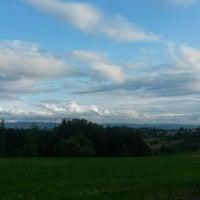 Photo taken at Lichtenwald by Sumi R. on 7/3/2013