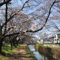 Photo taken at 千本桜 by むあ on 4/5/2017