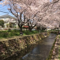 Photo taken at 千本桜 by むあ on 4/12/2017