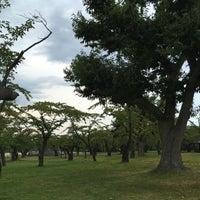 Photo taken at 青葉ヶ丘公園 by ysbay98 m. on 9/23/2017