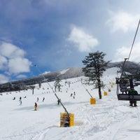 大山国際スキー場 - Ski Area