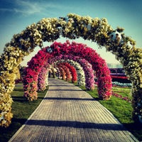 Photo taken at Dubai Miracle Garden by Sameer K. on 2/28/2013