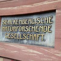Das Foto wurde bei Senckenberg Naturmuseum von Sebastian W. am 2/9/2013 aufgenommen
