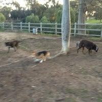 Photo taken at Balboa Park Dog Park by Virginia H. on 1/30/2013