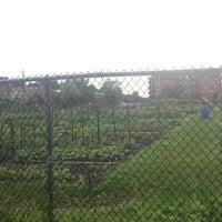 Photo taken at Jardin Communautaine Cabrini by Jocelyn B. on 6/29/2013