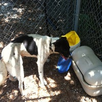 Photo taken at Hillsborough County Animal Services by Holly S. on 9/15/2012