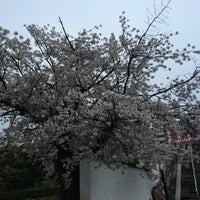 Photo taken at Kurashiki City by Lavendellady on 4/6/2017